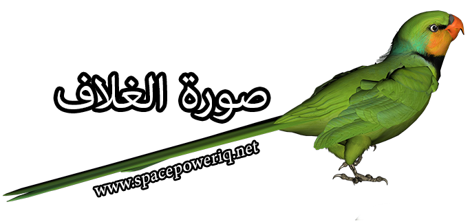 Epic مدبلج عربي Green_Parrot_PNG_Clipart_Picture4