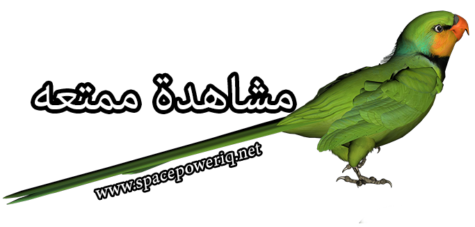 Epic مدبلج عربي Green_Parrot_PNG_Clipart_Picture_1