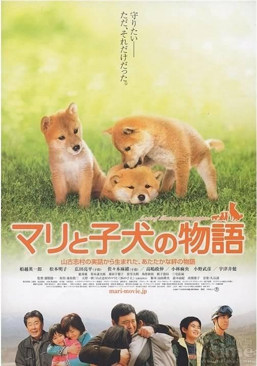 [PHIM] A Tale of Mari and three Puppies - Một bộ phim thực sự cảm động Puppies
