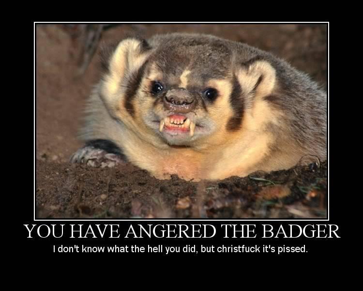 Honey Badger Badger