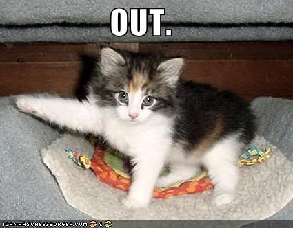 LOL CATZ! KittensaysOUT