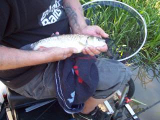 Day out at Barlow lakes Barlowlakes008