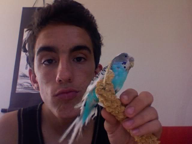 voici coco et mango !!!!!!!!!!!!! Photo192