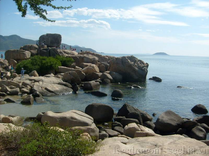 Thành phố biển Nha Trang - Ảnh cây nhà lá vườn S6300421