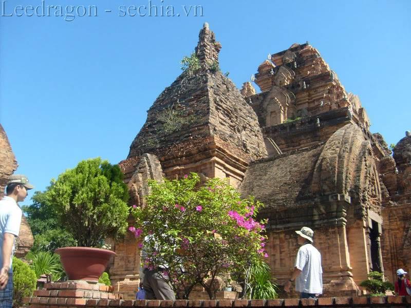 Thành phố biển Nha Trang - Ảnh cây nhà lá vườn S6300453