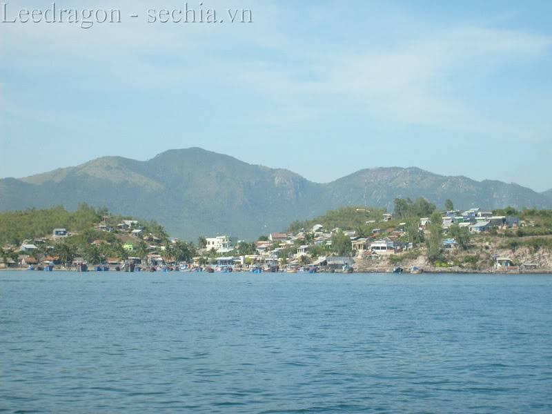 Thành phố biển Nha Trang - Ảnh cây nhà lá vườn S6300536