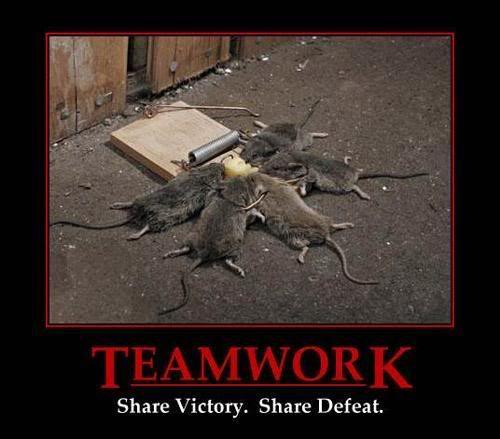 Funny, Strange and Random Pics Good_teamwork