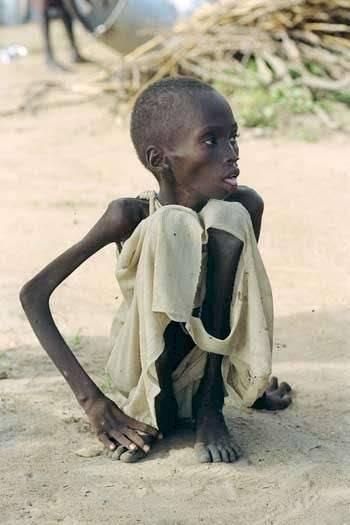 Не ходите дети В Африку гулять... 6