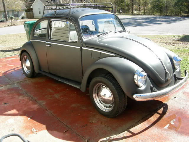 new here and pics of my bug Picture002-4