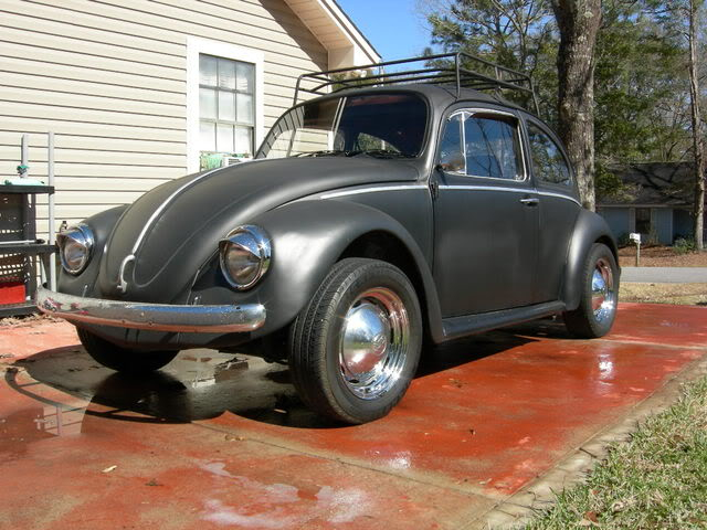 new here and pics of my bug Picture003-3