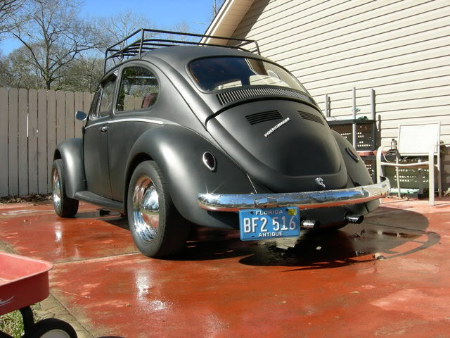 new here and pics of my bug Picture004-3