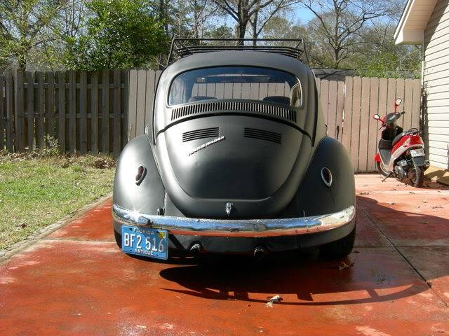 new here and pics of my bug Picture005-5
