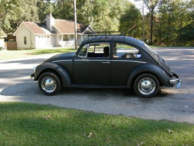 new here and pics of my bug Picture051
