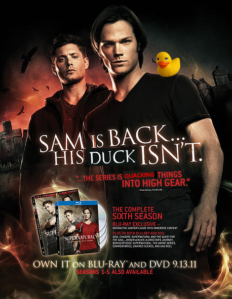 Duck Nation - Les canards de SPN - Page 2 374619918