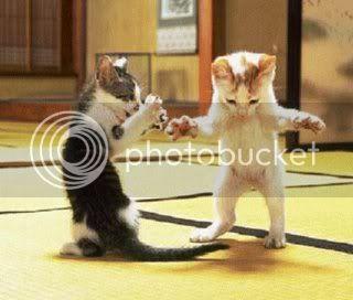 Kitten's Kittens