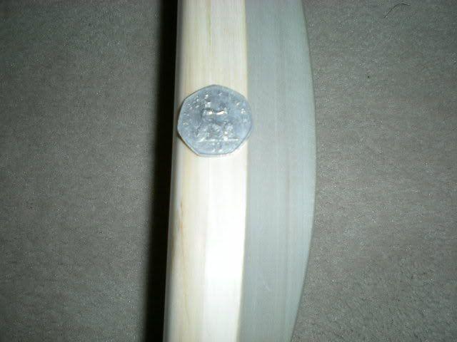 your bat - Page 2 DSCN0522