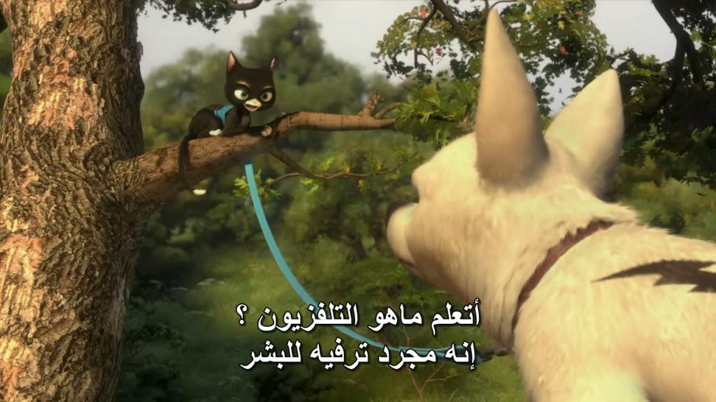 Bolt (2008) Disney Bolt06