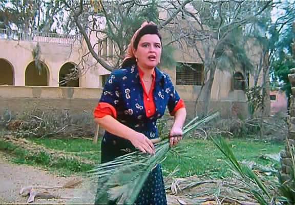 The Shepard & The Ladies (1991) AHQT الراعي والنساء Al-Raei03
