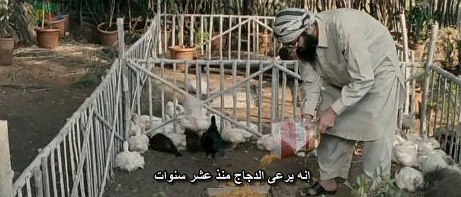 Tere Bin Laden (2010)  Ali Zafar BinLaden08