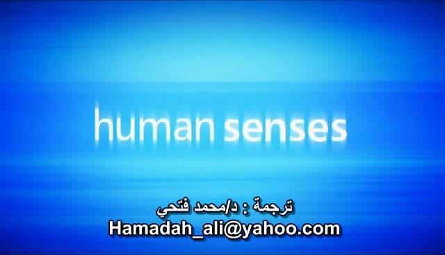 BBC - Human Senses BBCHumanSenses000