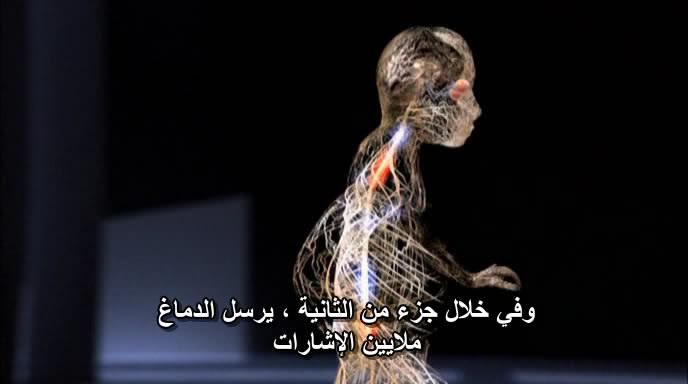 BBC - Human Senses BBCHumanSenses005