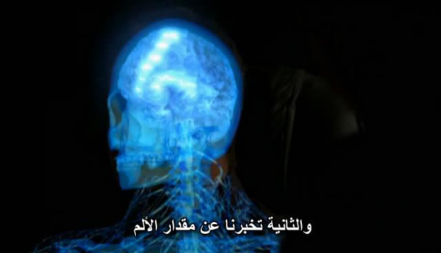 BBC - Human Senses BBCHumanSenses011