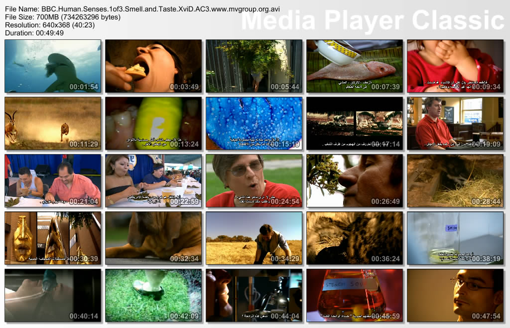 BBC - Human Senses Thumbs-BBCHumanSenses1of3SmellandTaste