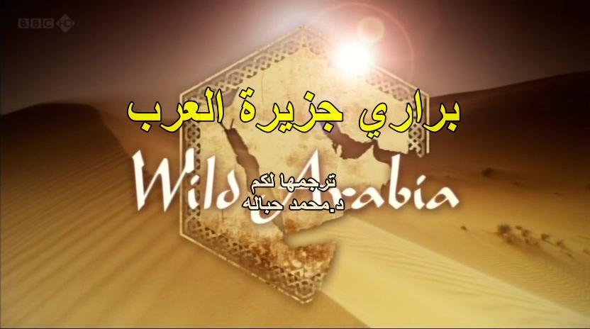 BBC - Wild Arabia (2013) Alexander Siddig WildArabia1-02