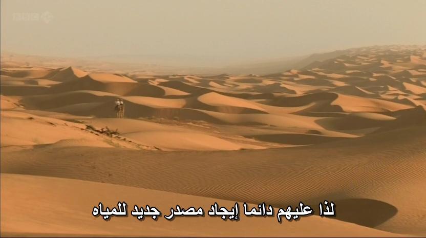 BBC - Wild Arabia (2013) Alexander Siddig WildArabia1-04