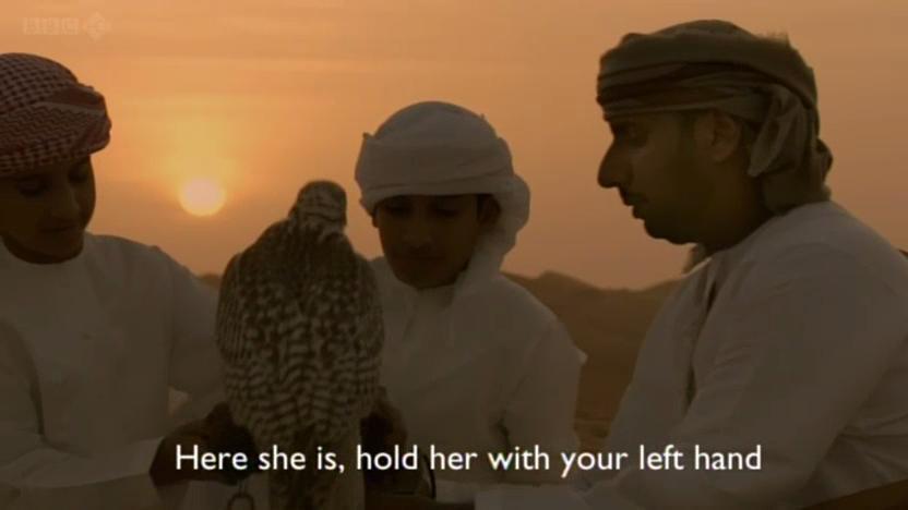 BBC - Wild Arabia (2013) Alexander Siddig WildArabia3-06