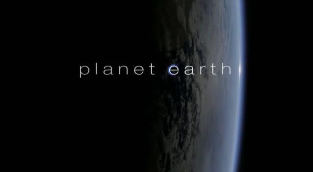 BBC : Planet Earth Snapshot20090402221615