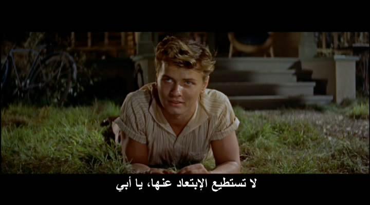 East Of Eden (1955) Elia Kazan Eden08