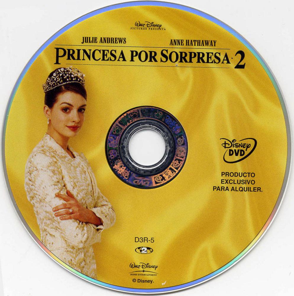 Princess Diaries Doulogy PrincessDiariesDVDin