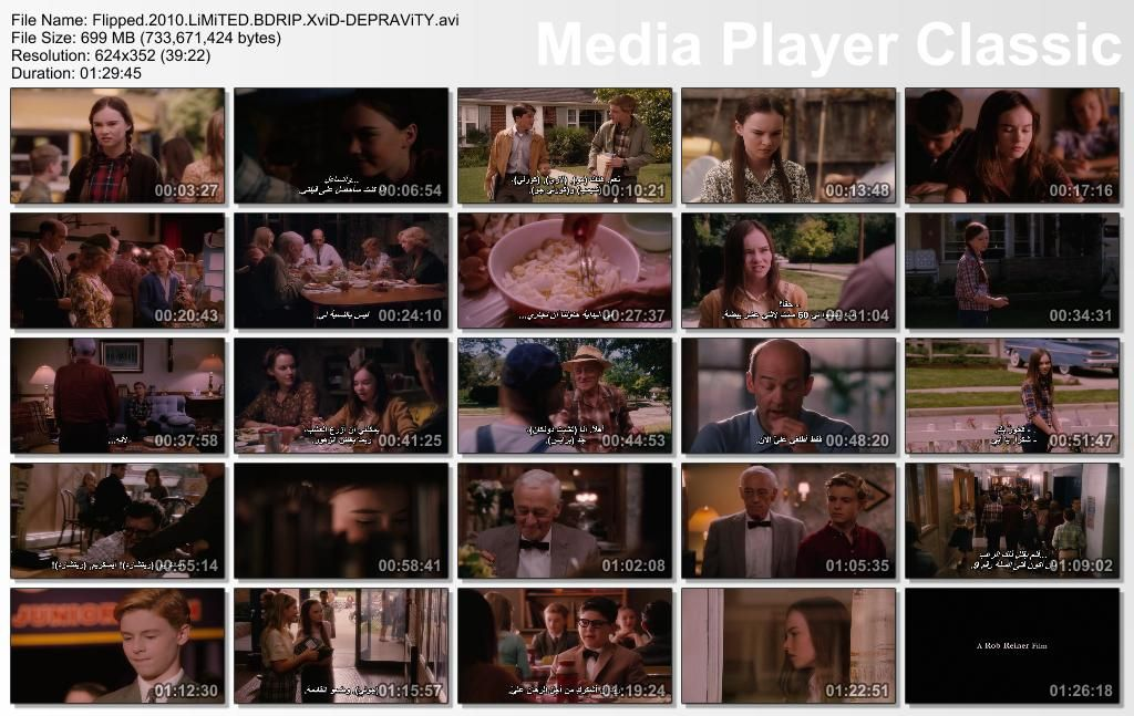 Flipped (2010) Rob Reiner Thumbs-Flipped