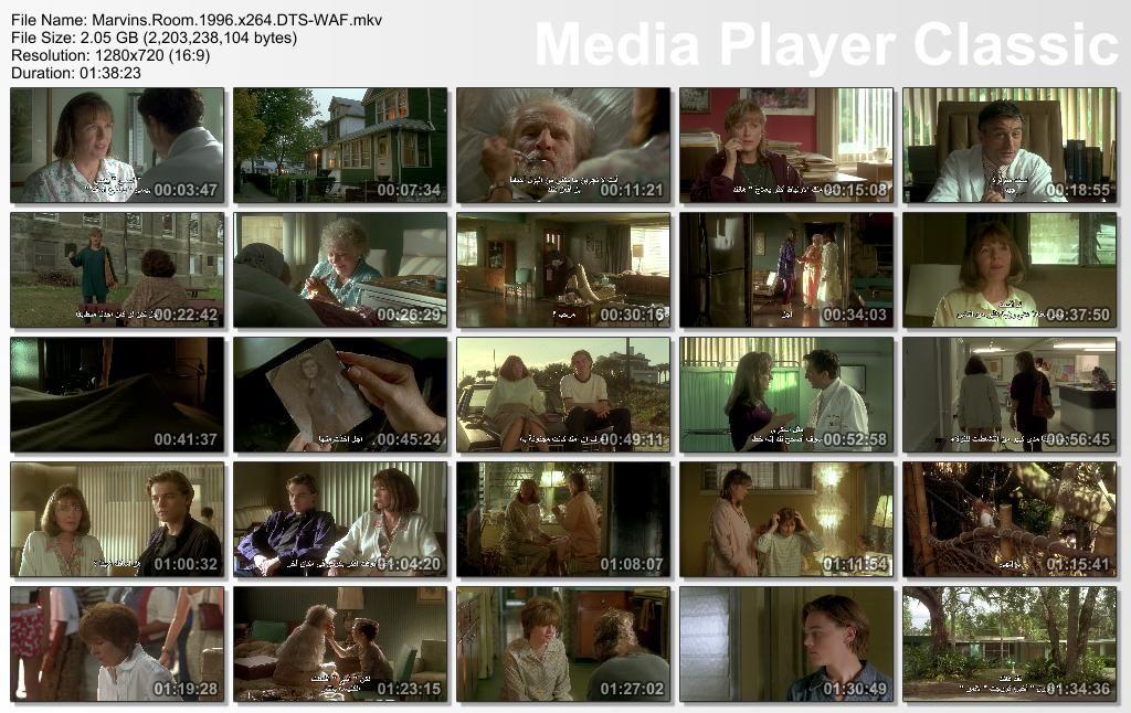 Marvin's Room (1996) Jerry Zaks Thumbs-MarvinsRoom