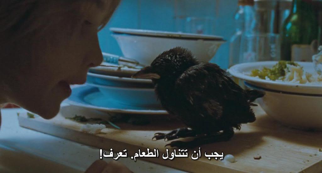 Kauwboy (Holland, 2012) The Oscar's Nominees Kauwboy03