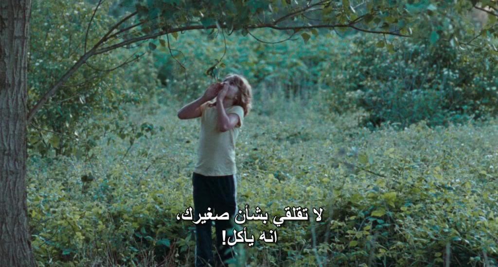 Kauwboy (Holland, 2012) The Oscar's Nominees Kauwboy09