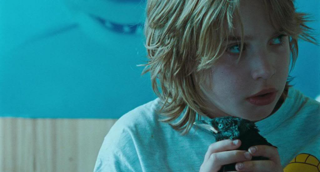 Kauwboy (Holland, 2012) The Oscar's Nominees Kauwboy12
