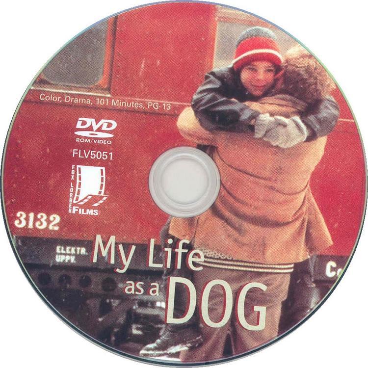 Mitt Liv Som Hund (Sweden, 1985) Lasse Hallström MyLifeAsDog_DVDsticker