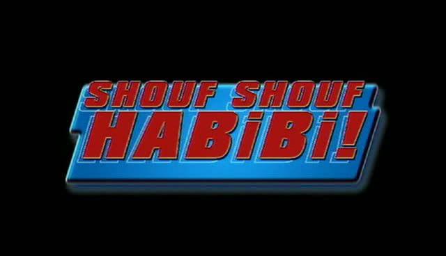 شوف يا حـبيـبـي (2004) Shouf Shouf Habibi  Snapshot20091015212957
