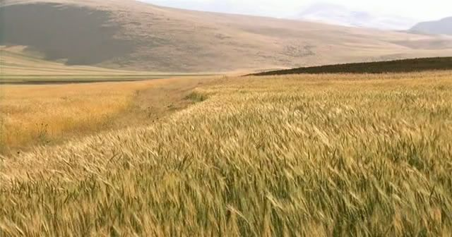 The Wind Will Carry Us (1999) Abbas Kiarostami OVentoNosLevar09