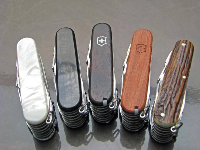 Un Swisschamp, mais lequel? Aidez moi à choisir! IMG_0641small-1