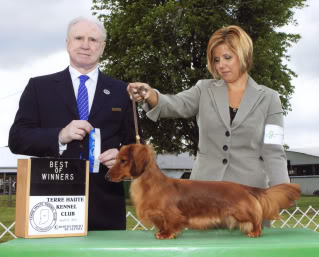Newest AKC Champion Ozo's Manmar Tides In Dirt's Out at Largh Pah ML! - Page 2 Steviewinner