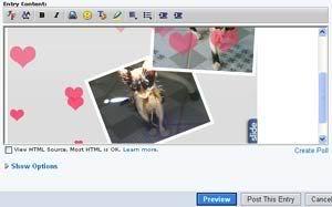 Slide trên Yahoo!360 Blog11