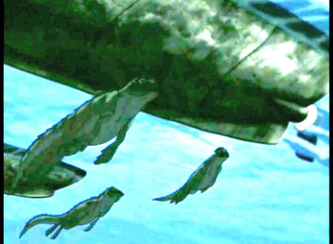 Iguana Seal? - Page 2 1-4