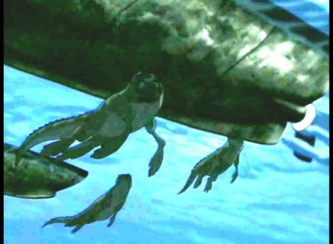 Iguana Seal? 2-1