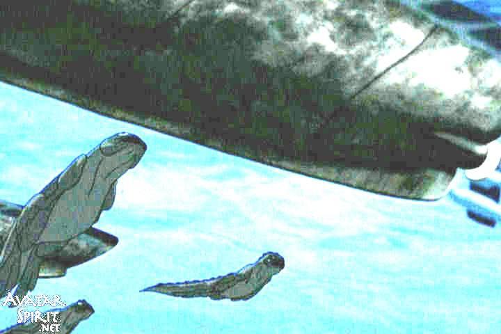 Iguana Seal? - Page 2 533