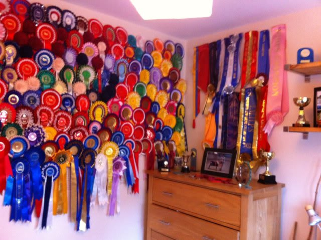 ♥ ~ WeLcOmE tO mY rAnCh ~ ♥ Rosettes1