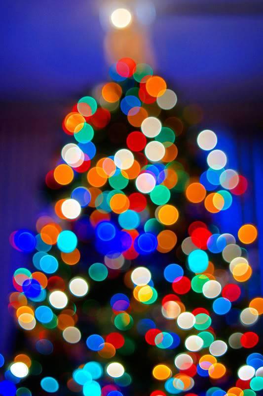 Božićna drvca Bokeh-Tree-small