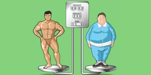 Aumenté mi masa pero mantuve mi peso ¿Por qué? Bmi-comparison
